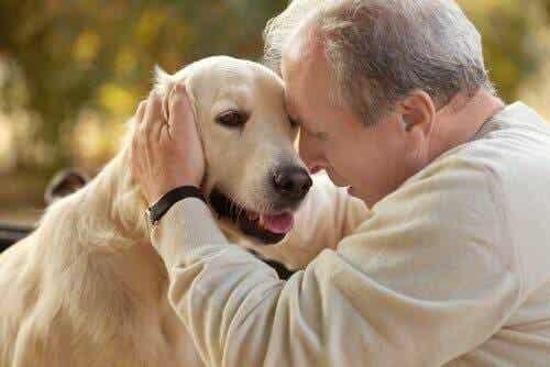 Dyreassistert terapi for pasienter med Alzheimers