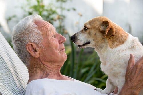 Dyreassistert terapi gir pasienter noe å se frem til.