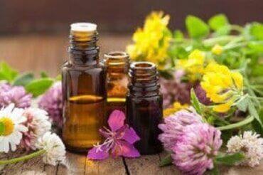 Sanselig aromaterapi og duftenes fantastiske kraft