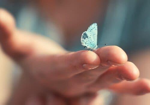 En hånd med en sommerfugl.