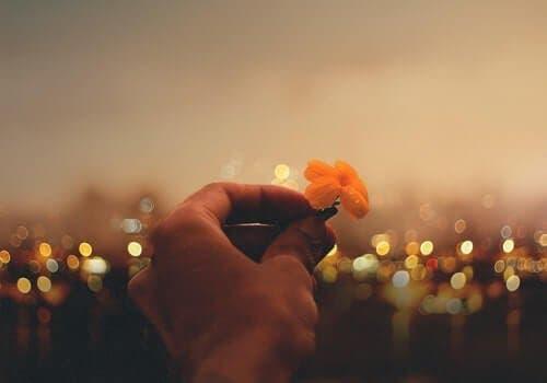 Viktor Frankls ordtak: Kjærlighet, mening og mot