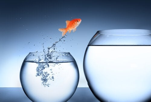En fisk som hopper til en større bolle