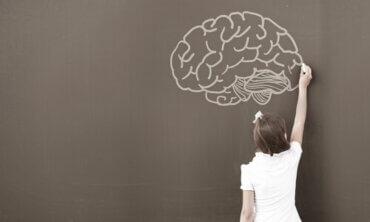 Hvorfor bruker psykologer WISC-testen?