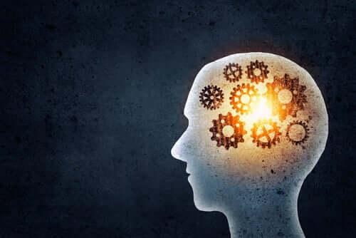 Hva oppnår vi ved å trene hukommelsen vår?