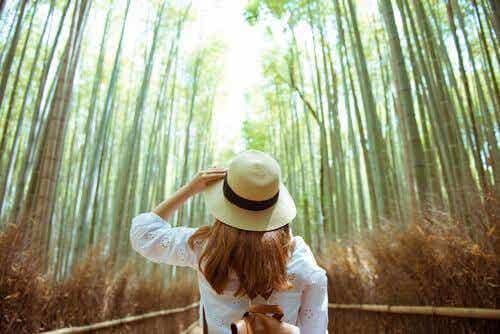 Fire øvelser for å få kontakt med naturen igjen