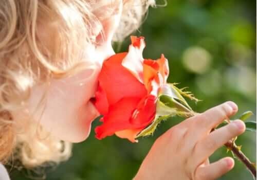 En jente som lukter på en blomst
