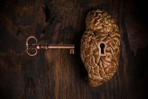 Nøkkelen til hjernen.