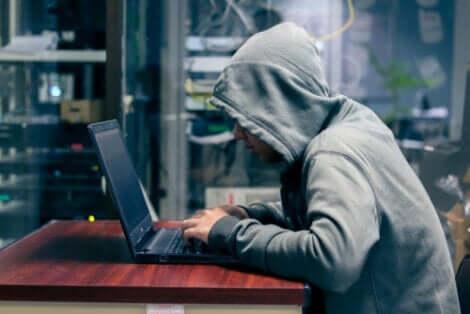 En hacker i hettegenser.