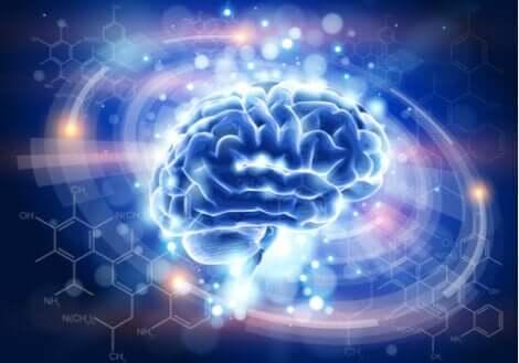 Et bilde av en blå belyst hjerne.