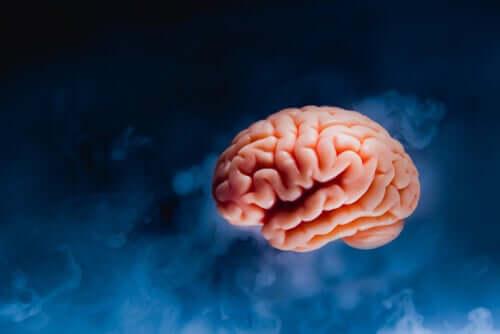Bildet av hjernen omgitt av blå materie