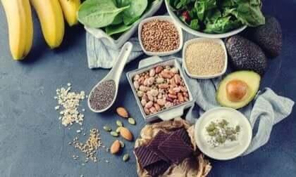 Ullike typer av mat som er rik på fettet som hjernen din trenger