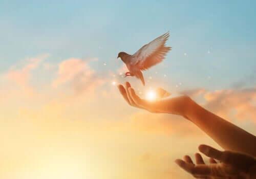 En fugl i hånden.