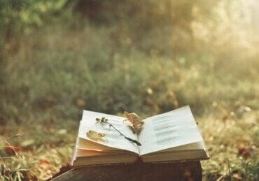 Poesiens magi og hvordan den kan lindre smerte