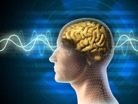 Et bilde som representerer hjernebølger.