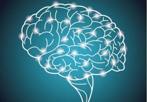 Verdens største studie på intelligens