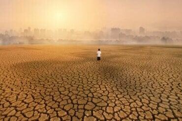 Miljøangst, en konsekvens av klimaendringer