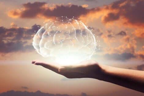 En person som holder en illustrasjon av en hjerne