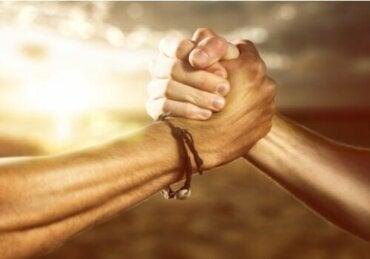 Gahuku-Gama: Likhet og solidaritet
