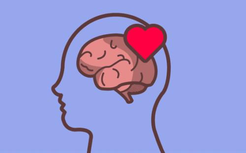 Hjerne og hjerte.