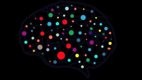 En hjerne med farger.