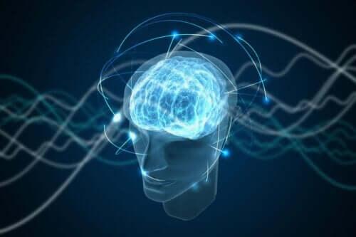 En hjerne som representerer menneskelig bevissthet.