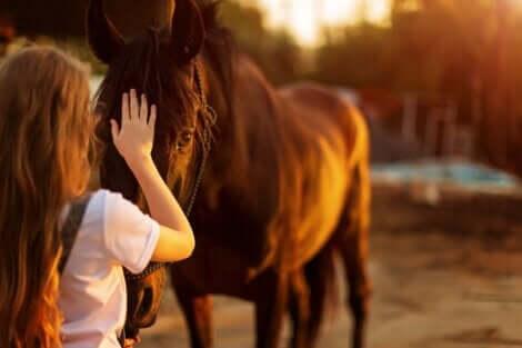 En person som prøver å komme over en frykt for hester.