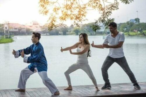 Qigong (chi kung) – Karakteristikker og praksis