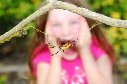 Barn som er redd for edderkopper.