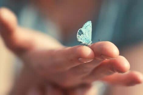 En person som holder en sommerfugl.