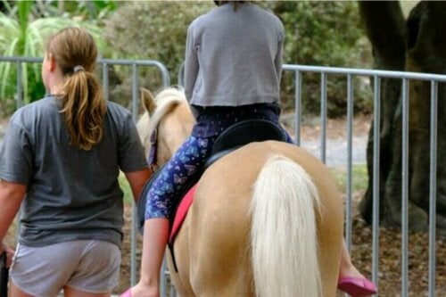 Hesteassistert terapi: fordeler, bruksområder og disipliner