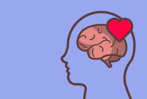 En hjerne med et hjerte.