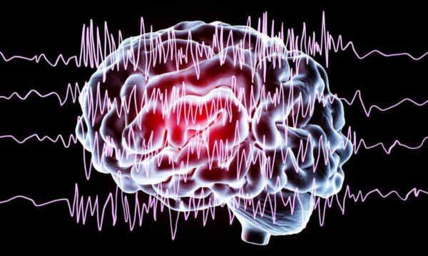 Bølger i en hjerne.