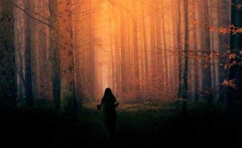 En person i skogen.