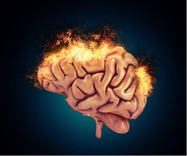 Den reaktive hjernen