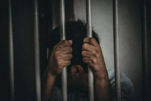 Utdanning i fengsel – Ulike teorier og modeller
