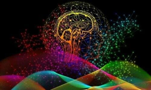 Viktigheten av hjernens unike nevrale signaturer