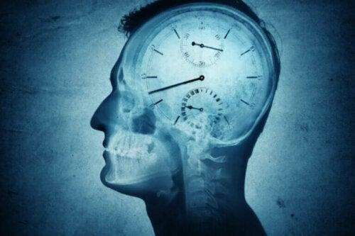 Kronobiologi og dens innvirkning på mennesker