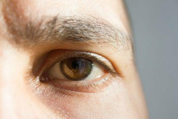 Syv kuriøse og fascinerende fakta om sansene dine