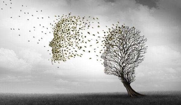Forskjellene mellom Alzheimers og demens