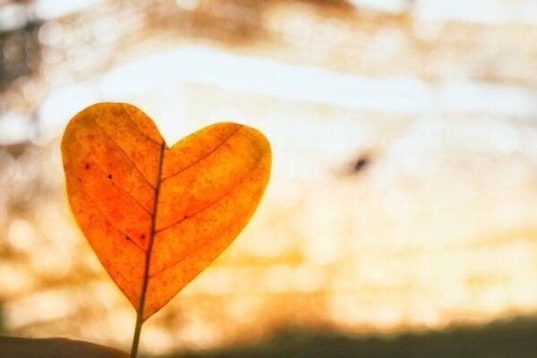 Bruk ubetinget kjærlighet for å komme over et brudd